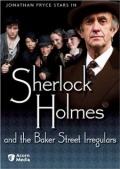 Шерлок Холмс и чумазые сыщики с Бэйкер-стрит (ТВ)