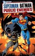 Супермен/Бэтмен: Враги общества (видео)